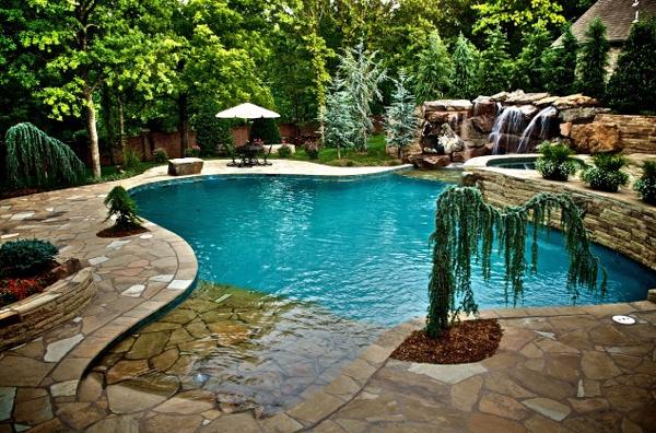 Pool Natural Design Design Ideas And Photos