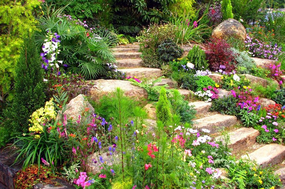 Plant your perennials