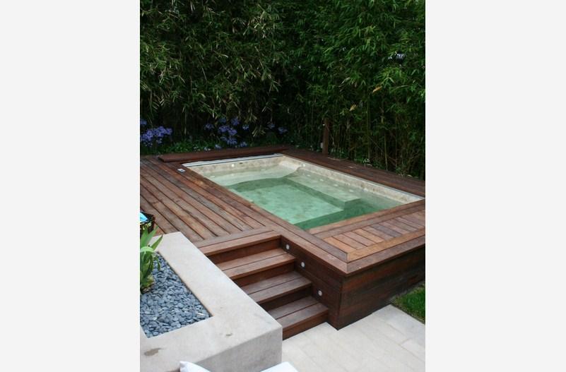 Urban Oasis Pool Design