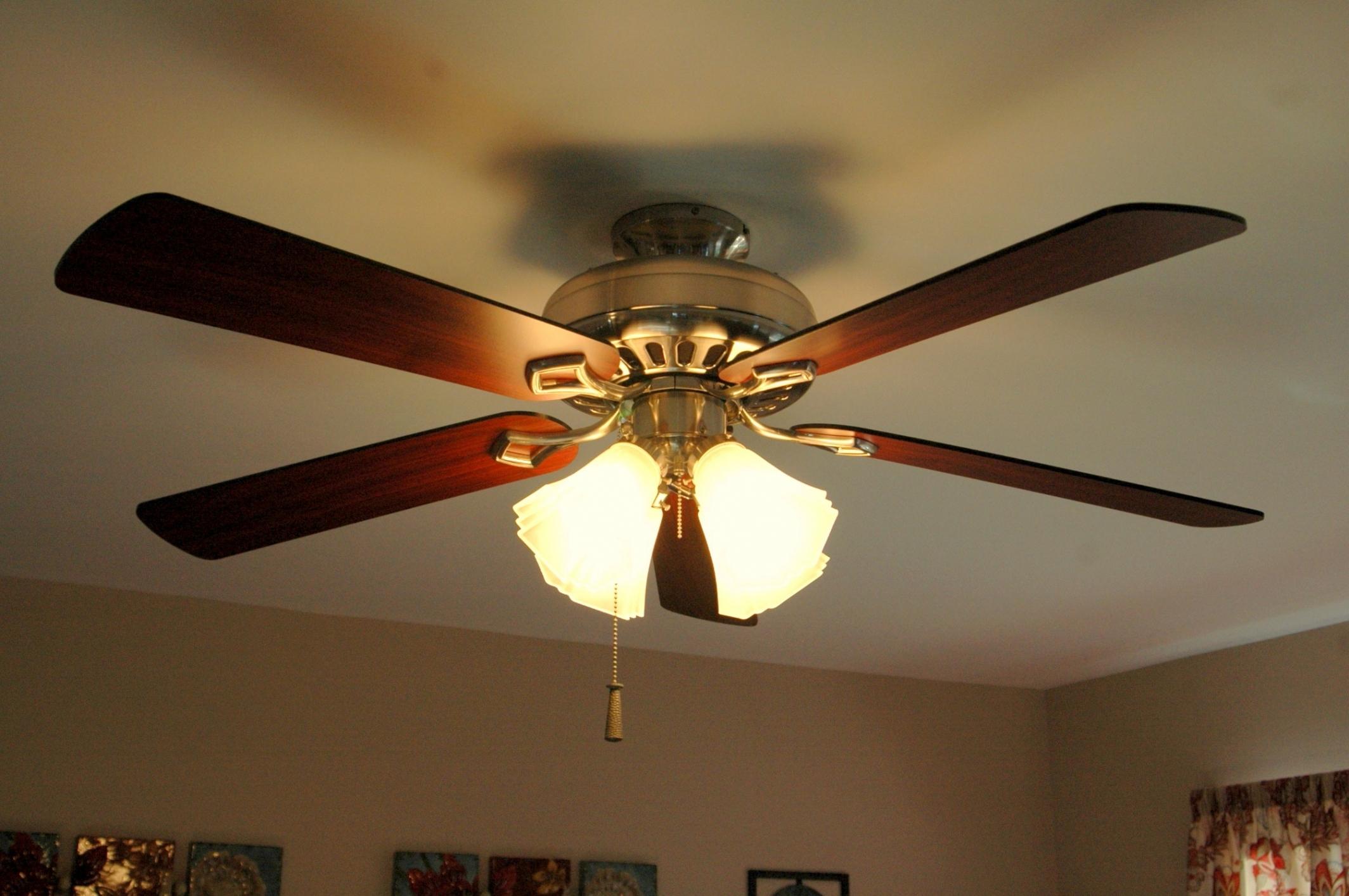 Ceiling fan wind turbine pranksenders ceiling fan wind turbine theteenline org aloadofball Choice Image