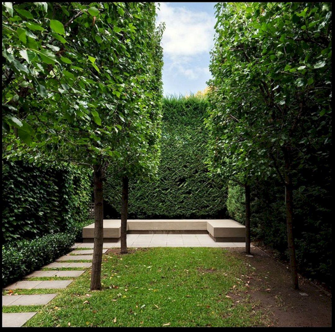 Minimalist Garden Landscape Designs (Minimalist Garden ...