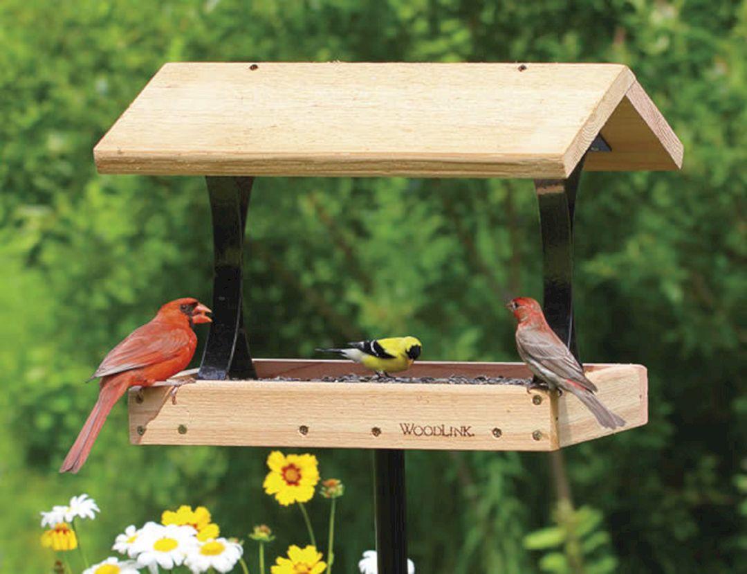 Large Platform Bird Feeders (Large Platform Bird Feeders ...