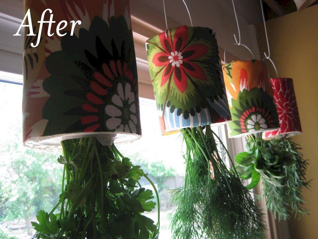 Plants that grow upside down 10 freshouz - Can a plant grow upside down ...