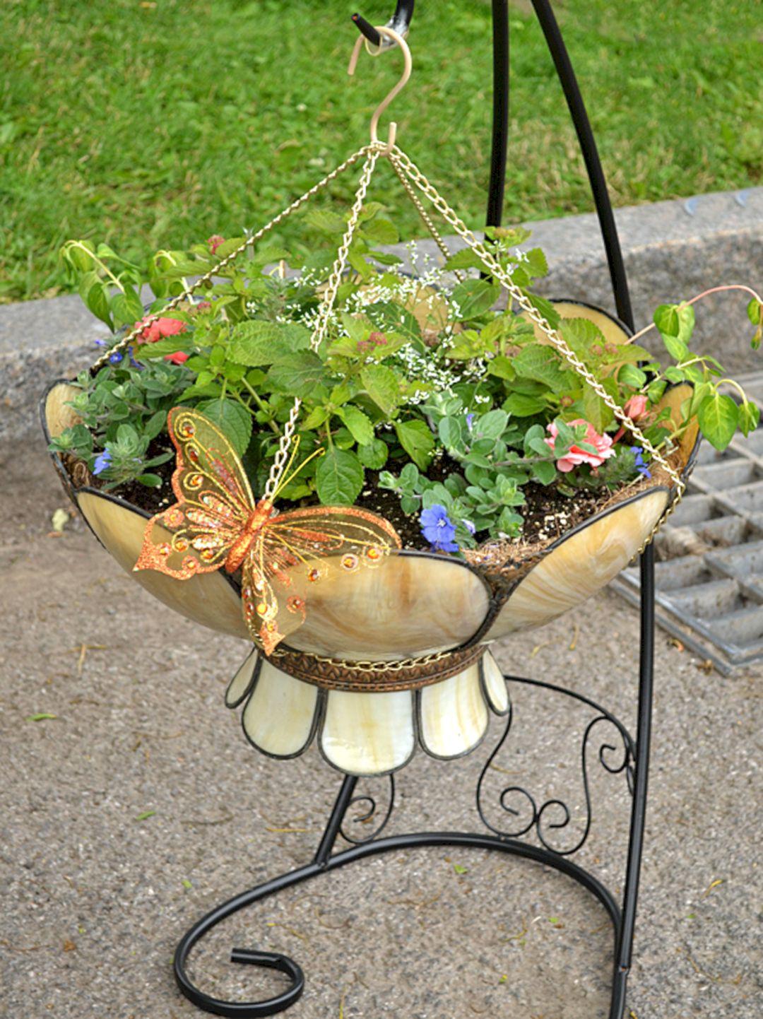 Plants that grow upside down 8 freshouz - Can a plant grow upside down ...