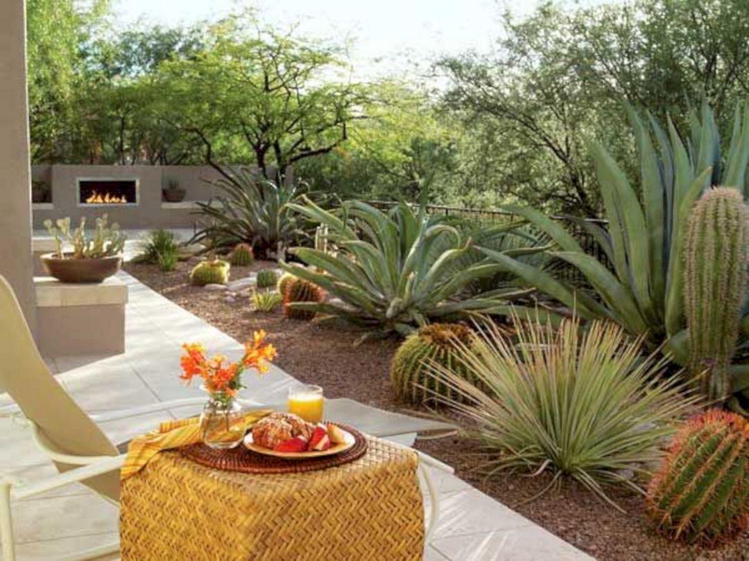 Beautiful Desert Garden Design Ideas 18 (Beautiful Desert ...