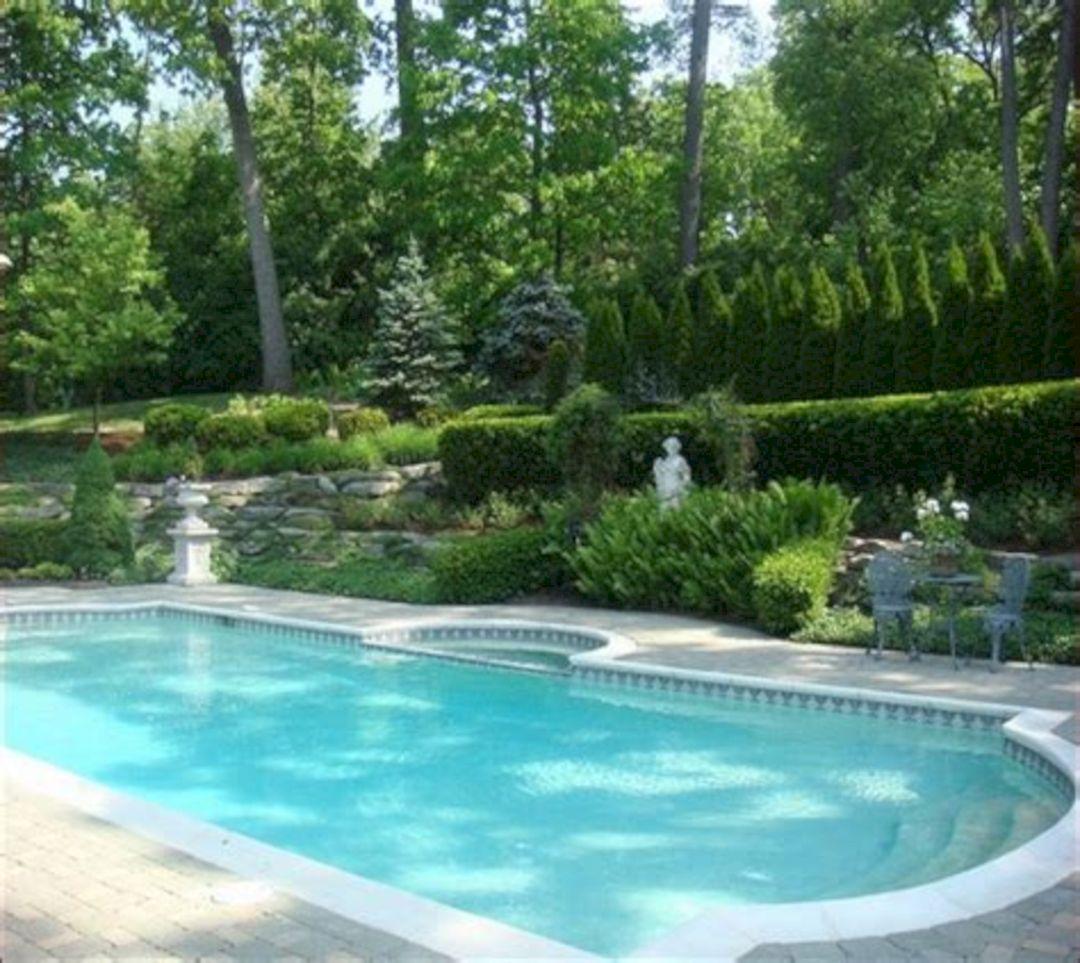 Florida pool landscaping ideas back yards florida pool for Pool designs florida
