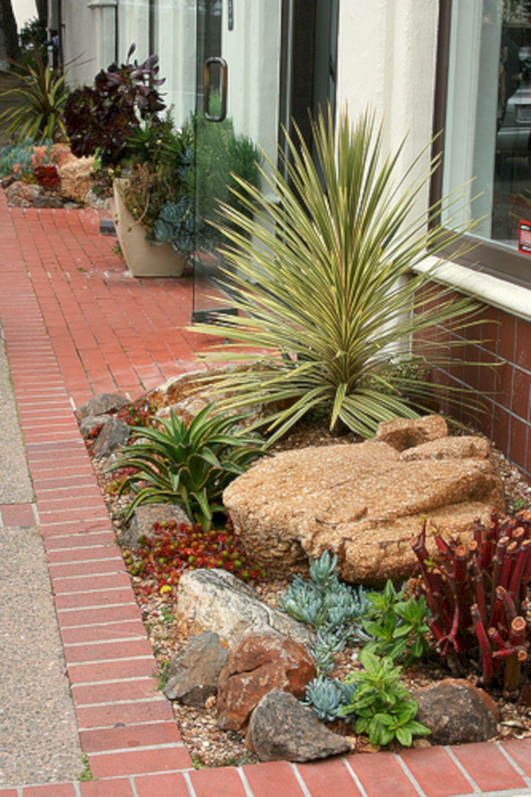 Pinterest Succulent Garden (Pinterest Succulent Garden ...