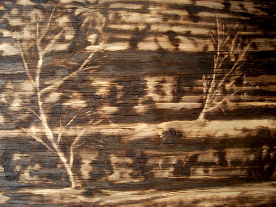 Wood Burnt Plywood Floor Ideas Wood Burnt Plywood Floor